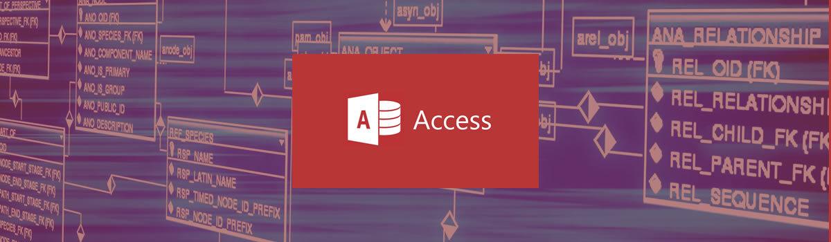 Access. Nivel avanzado
