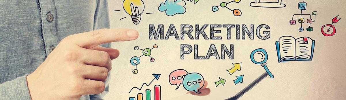 Plan de Marketing y organización de ventas